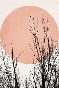 Ilustração Sunset Dreams