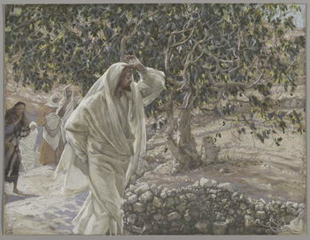 Reprodução do quadro The Accursed Fig Tree, illustration from 'The Life of Our Lord Jesus Christ', 1886-94