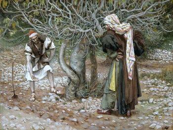 Reprodução do quadro The Barren Fig Tree, illustration for 'The Life of Christ', c.1886-94
