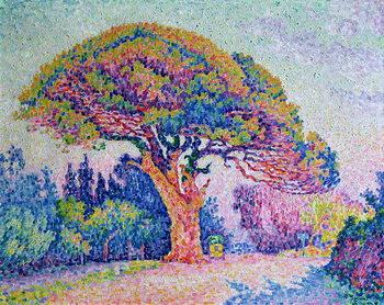 Reprodução do quadro The Pine Tree at St. Tropez, 1909