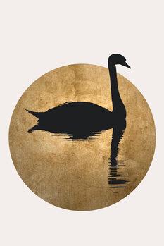 Ilustração The Swan