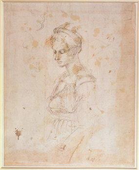 Reprodução do quadro W.41 Sketch of a woman