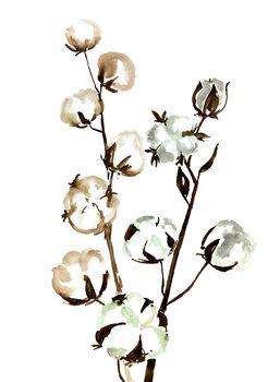 Ilustração Watercolor cotton branches