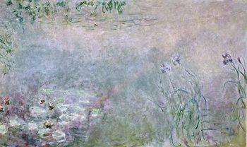 Reprodução do quadro Waterlilies (detail of upper section), c.1910