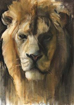 Reprodução do quadro  Asiatic Lion, 2015,