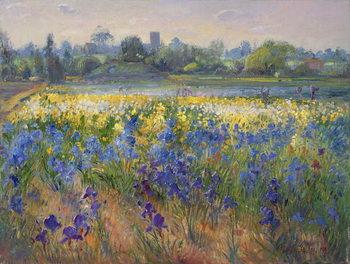 Reprodução do quadro  Blue Haze at Burgate, 1993
