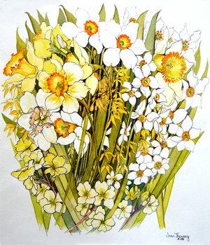 Reprodução do quadro  Daffodils, Narcissus, Forsythia and Primroses, 2000