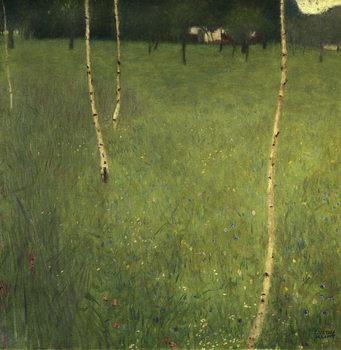 Reprodução do quadro  Farmhouse with Birch Trees, 1900