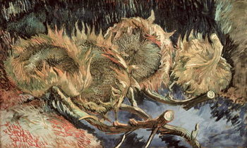 Reprodução do quadro  Four Withered Sunflowers, 1887