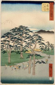 Reprodução do quadro  Fujisawa from the series 53 stations of the Tokaido, 1855
