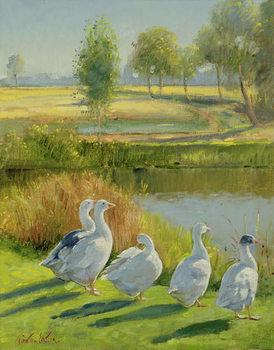 Reprodução do quadro  Gooseguard