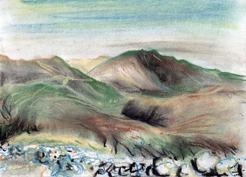 Reprodução do quadro  Hills in the Lake District, 2005,
