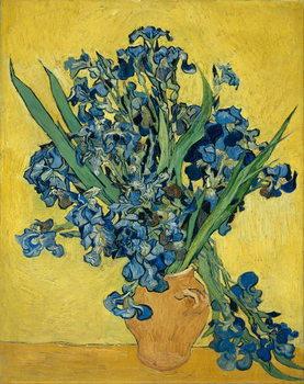 Reprodução do quadro  Irises, 1890