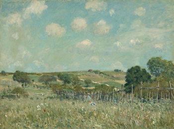 Reprodução do quadro  Meadow, 1875