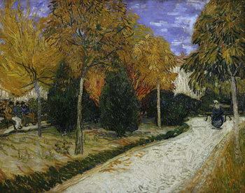 Reprodução do quadro  Path in the Park at Arles, 1888