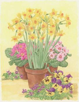 Reprodução do quadro  Pots of Spring Flowers, 2003