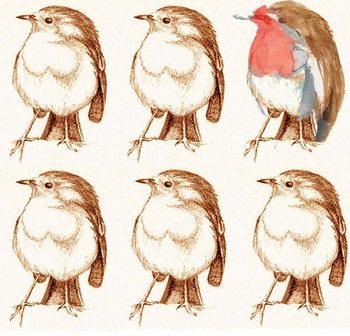 Reprodução do quadro Robin