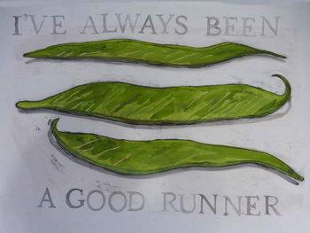 Reprodução do quadro Runner Beans,2013