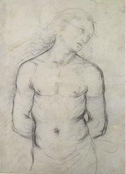 Reprodução do quadro Saint Sebastian, 1499-1500