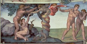 Reprodução do quadro  Sistine Chapel Ceiling (1508-12): The Fall of Man, 1510 (fresco)