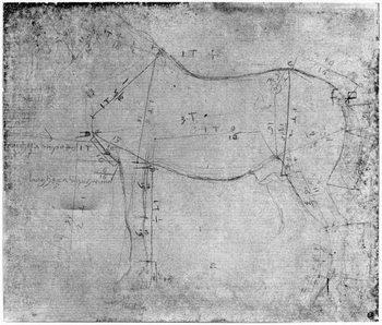 Reprodução do quadro  Study of a Horse (metal point on paper)