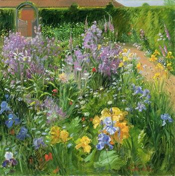 Reprodução do quadro  Sweet Rocket, Foxgloves and Irises, 2000