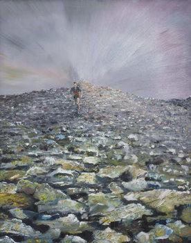 Reprodução do quadro  The 42nd Peak, 2012,