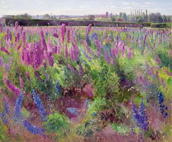 Reprodução do quadro  The Delphinium Field, 1991