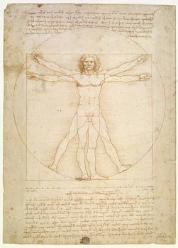 Reprodução do quadro  The Proportions of the human figure (after Vitruvius), c.1492