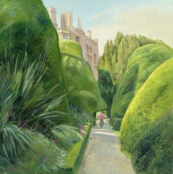Reprodução do quadro The Topiary Path, Powis Castle
