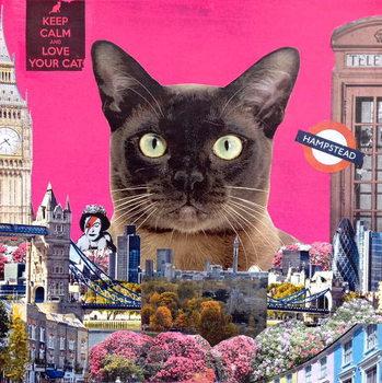 Reprodução do quadro Urban cat, 2015,