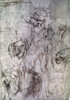 Reprodução do quadro Various studies, verso of Study for David