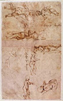 Reprodução do quadro  W.4v Page of sketches of babies or cherubs