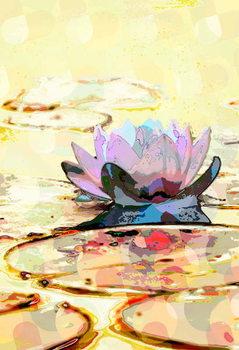 Reprodução do quadro Water Lily