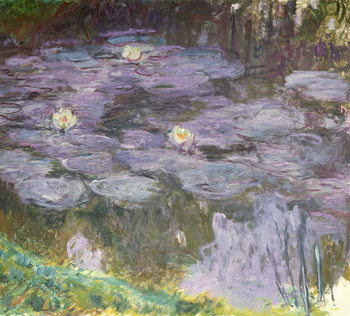 Reprodução do quadro  Waterlilies, 1917