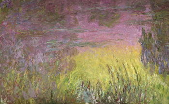 Reprodução do quadro  Waterlilies at Sunset, 1915-26 (oil on canvas)