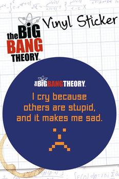 Autocolantes BIG BANG THEORY - stupid
