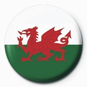 FLAG - WALES Badges