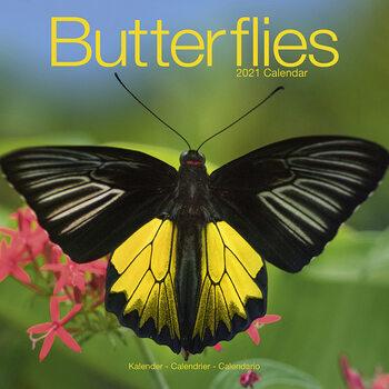 Calendar 2021 Butterflies
