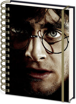 Caderno  Harry Potter - Harry Voldemort 3D Cover