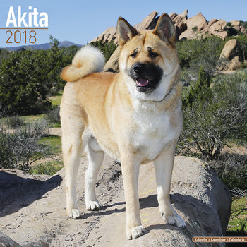 Calendar 2018 Akita