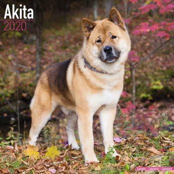 Calendar 2020  Akita