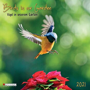 Calendar 2021 Birds in our Garden