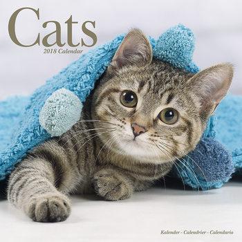 Calendar 2018 Cats