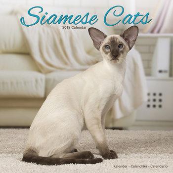 Calendar 2018  Cats - Siamese