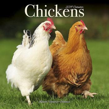 Calendar 2019  Chickens