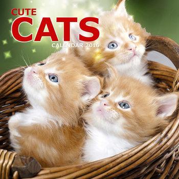 Calendar 2017 Cute Cats