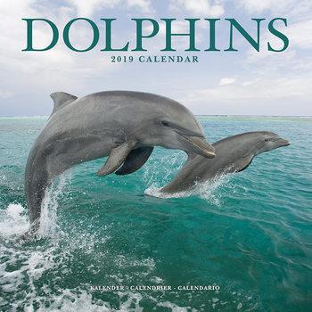 Calendar 2019  Dolphins