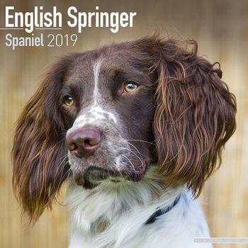 Calendar 2019  Eng Springer Spaniel