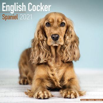 Calendar 2021 English Cocker Spaniel